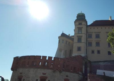 Poland D